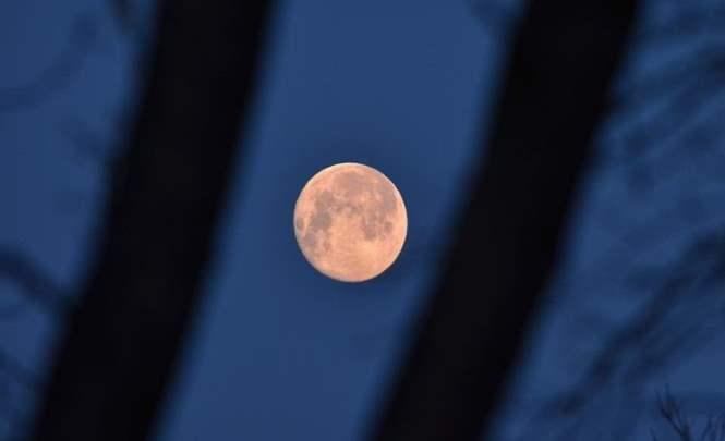Темный объект завис на фоне луны