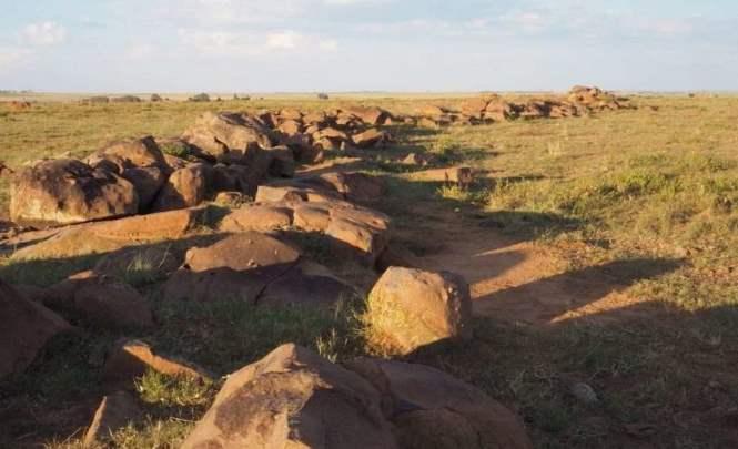 В Южной Африке обнаружены древние петроглифы