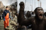 Вакцинированный сотрудник зоопарка заразил COVID 13 горилл.