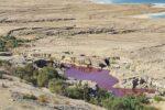 Вода в озере «загадочно» покраснела у Мертвого моря в Иордании