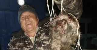 В Башкирии поймали чупакабру