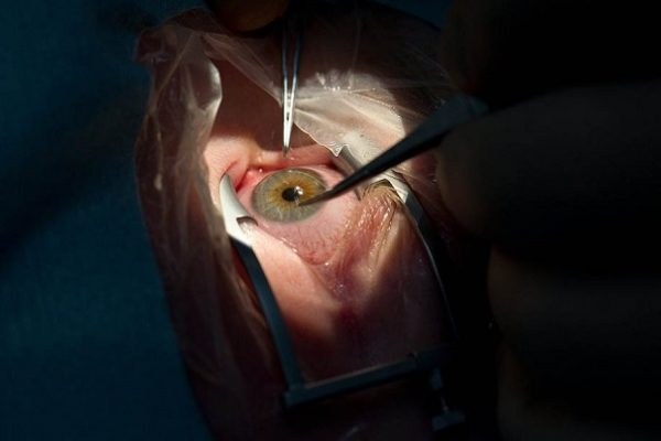 японские ученые восстановили сустав нвмагничеванием стволовых клеток
