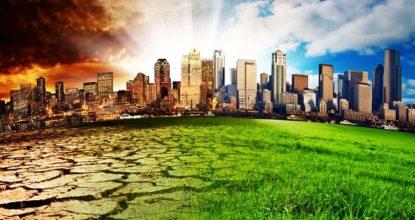 Экологические заблуждения человечества
