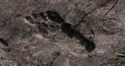 Следы гигантов обнаружены в Китае
